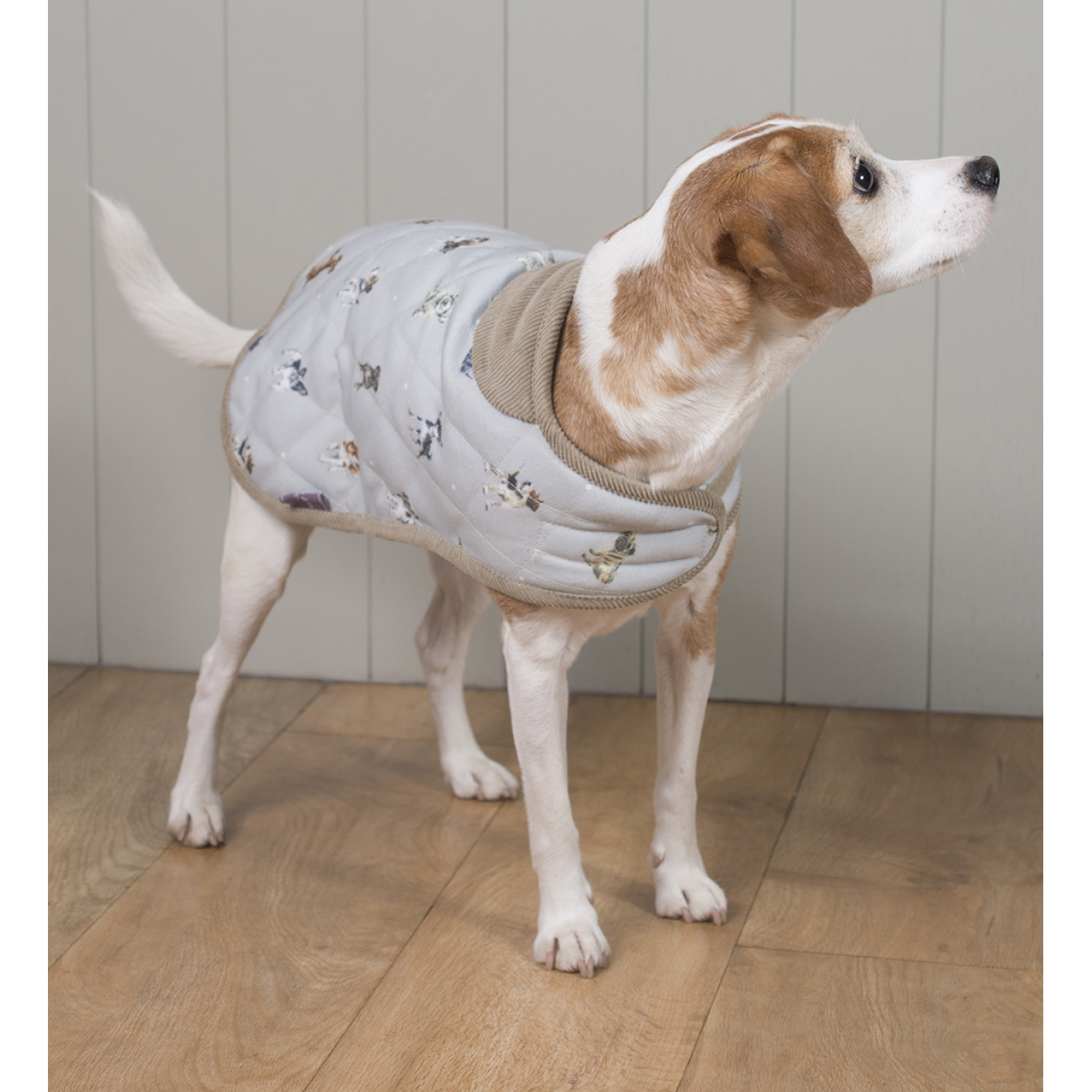 Wrendale Medium Dog Coat
