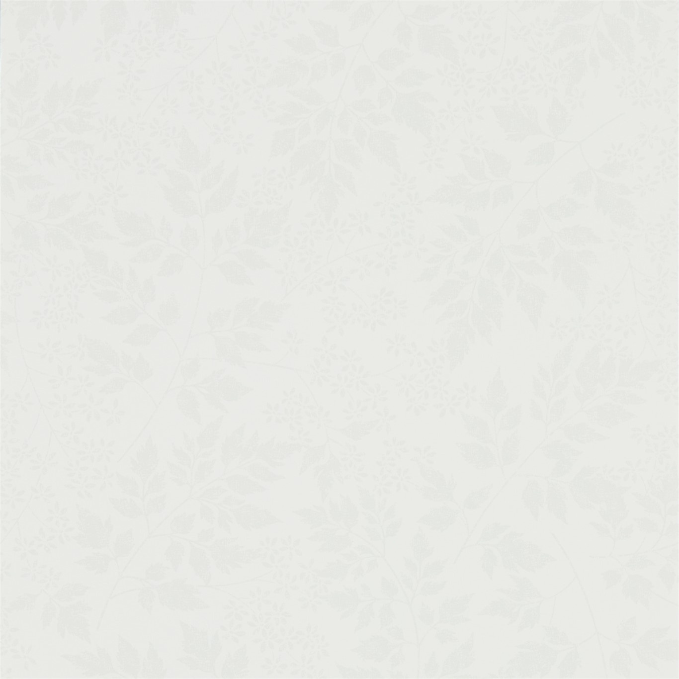 Image of Sanderson Home Spring Leaves Dove Wallpaper 216373