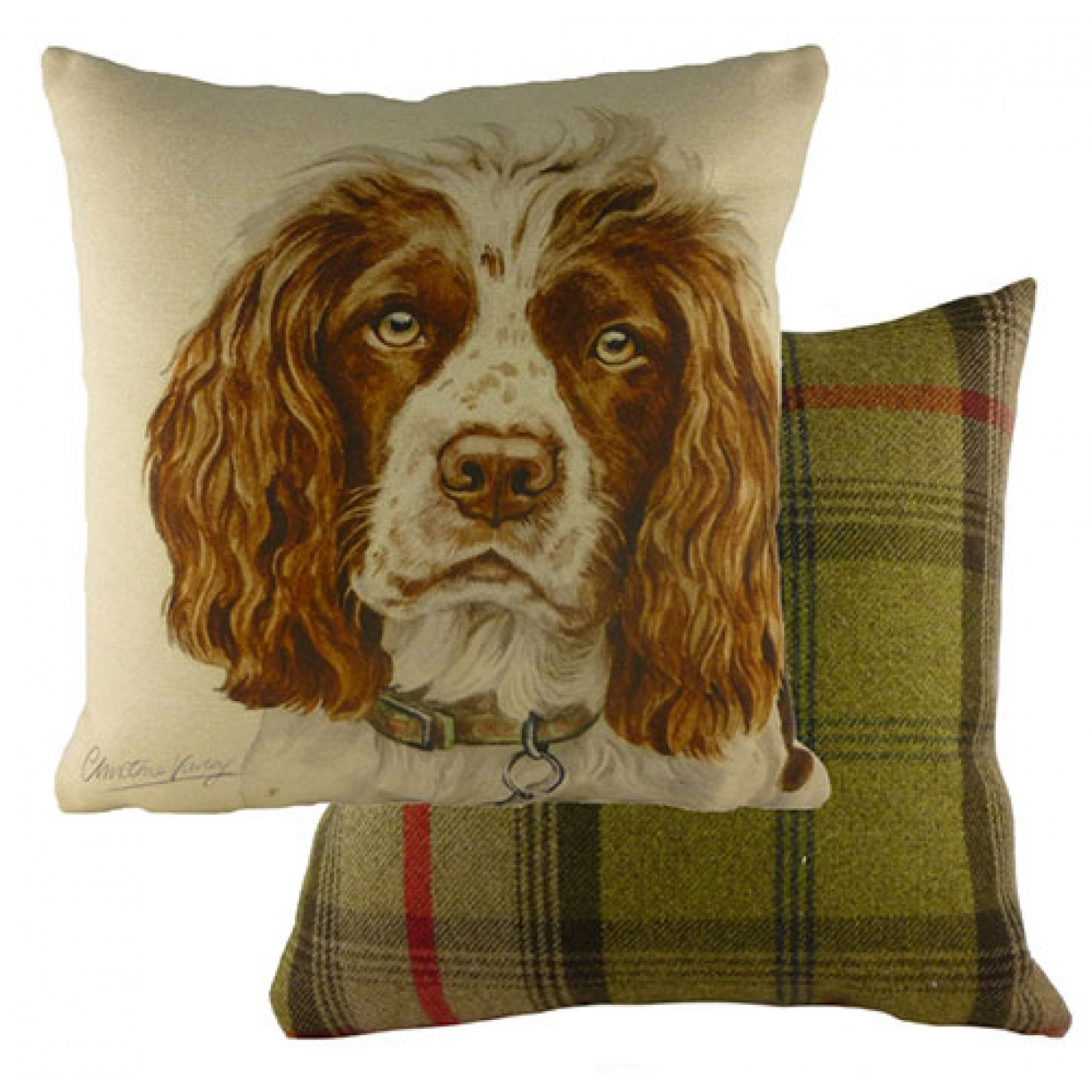 Image of Waggy Dogz Springer Spaniel Cushion Cover