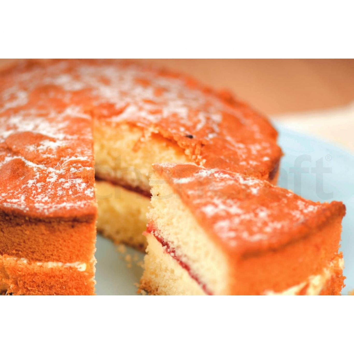 Non Stick Round Sandwich Pan 20cm/8ins