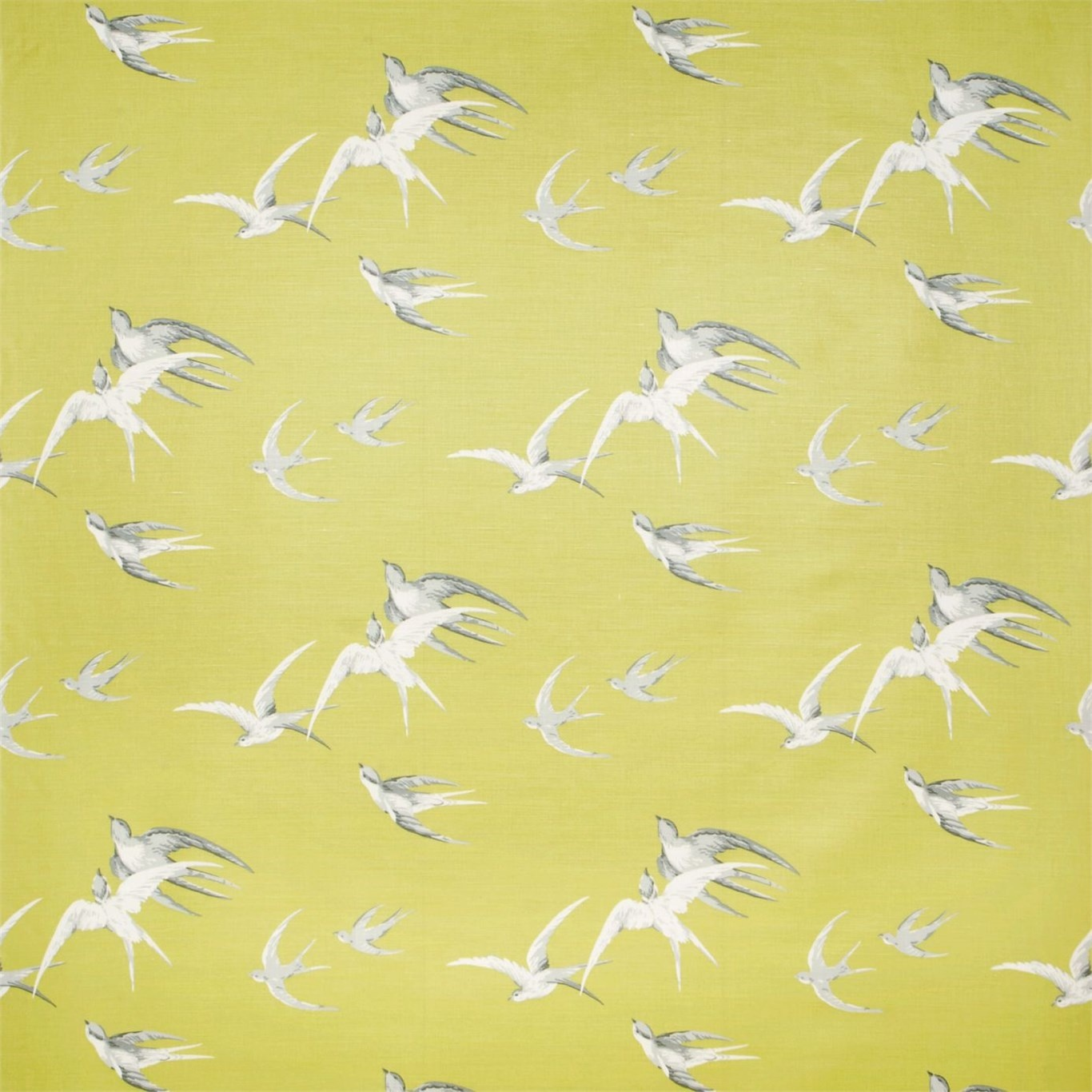 Image of Sanderson Swallows Lime Curtain Fabric DVIPSW201