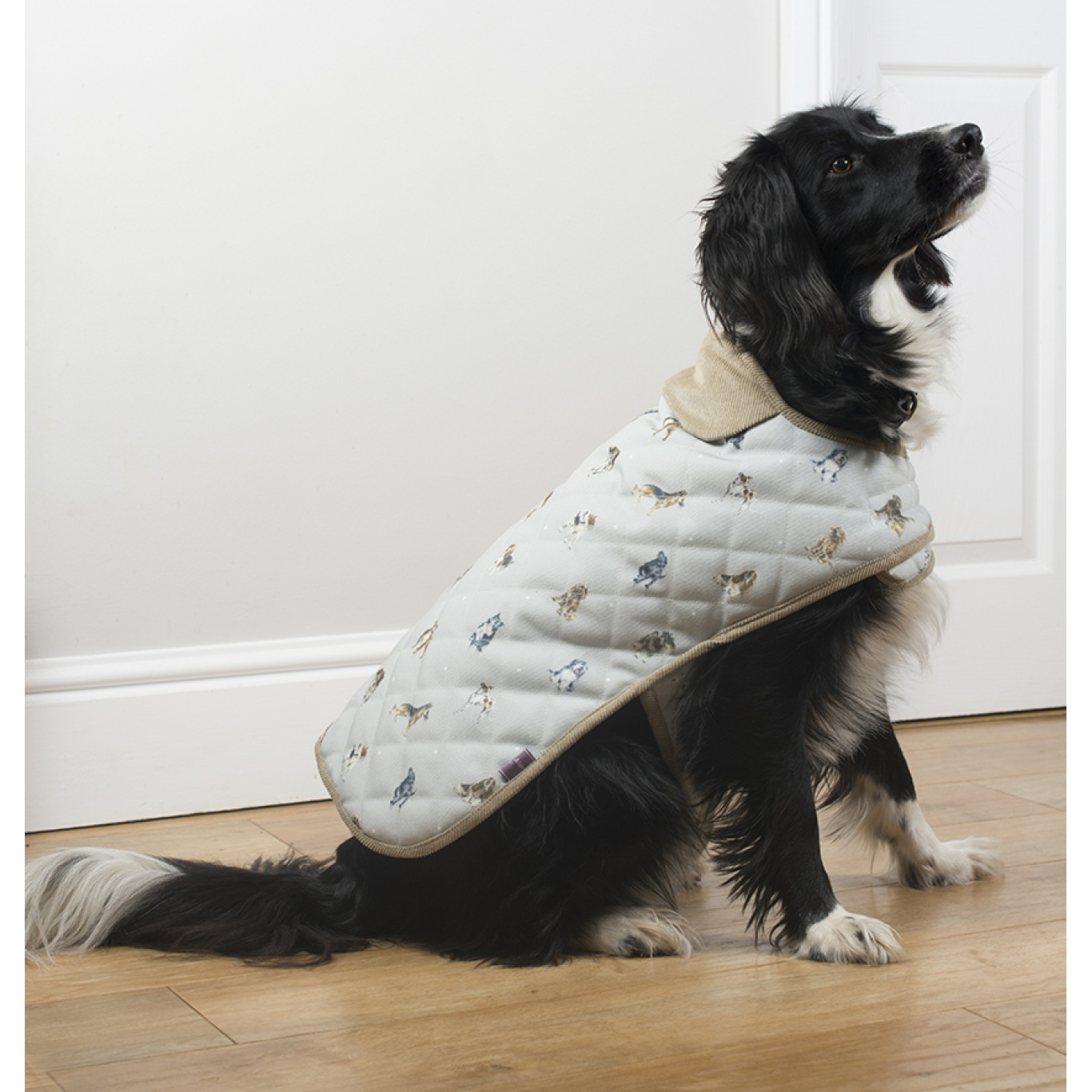Wrendale Large Dog Coat