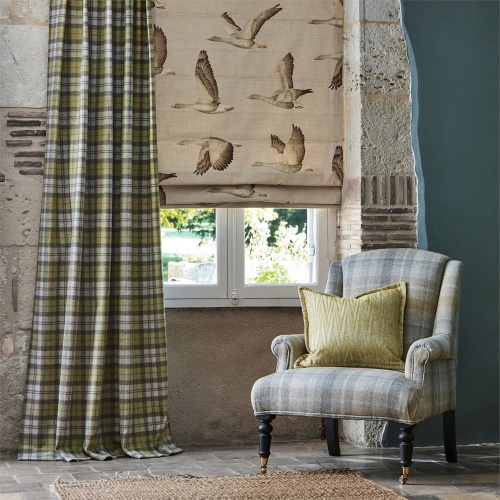 Sanderson Fenton Check Check Caraway/Green Fabric 236743