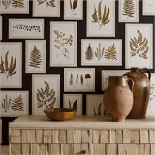 Sanderson Fern Gallery Charcoal/Spice Wallpaper 215713