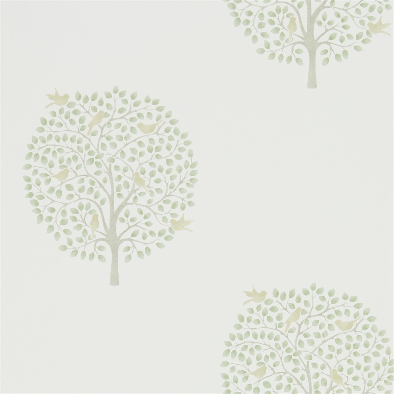 Image of Sanderson Home Bay Tree Celadon/Flint Wallpaper 216359