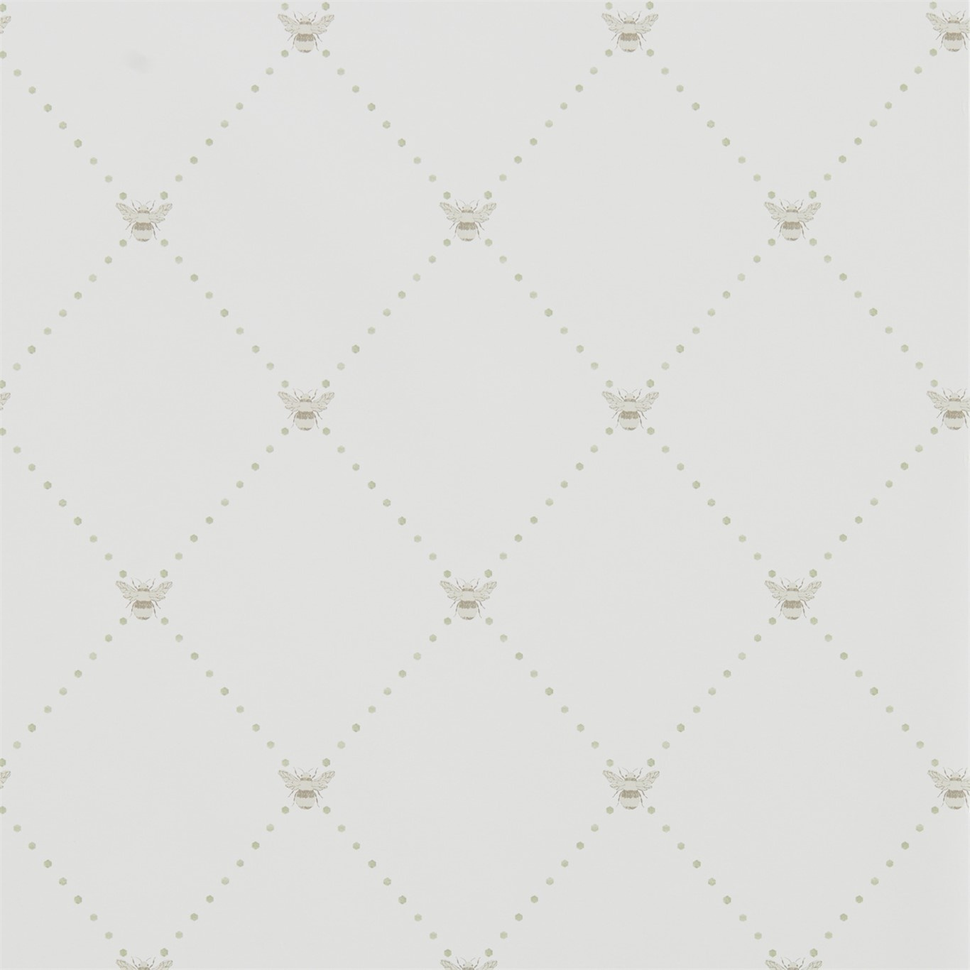 Image of Sanderson Home Nectar Celadon/Flint Wallpaper 216355
