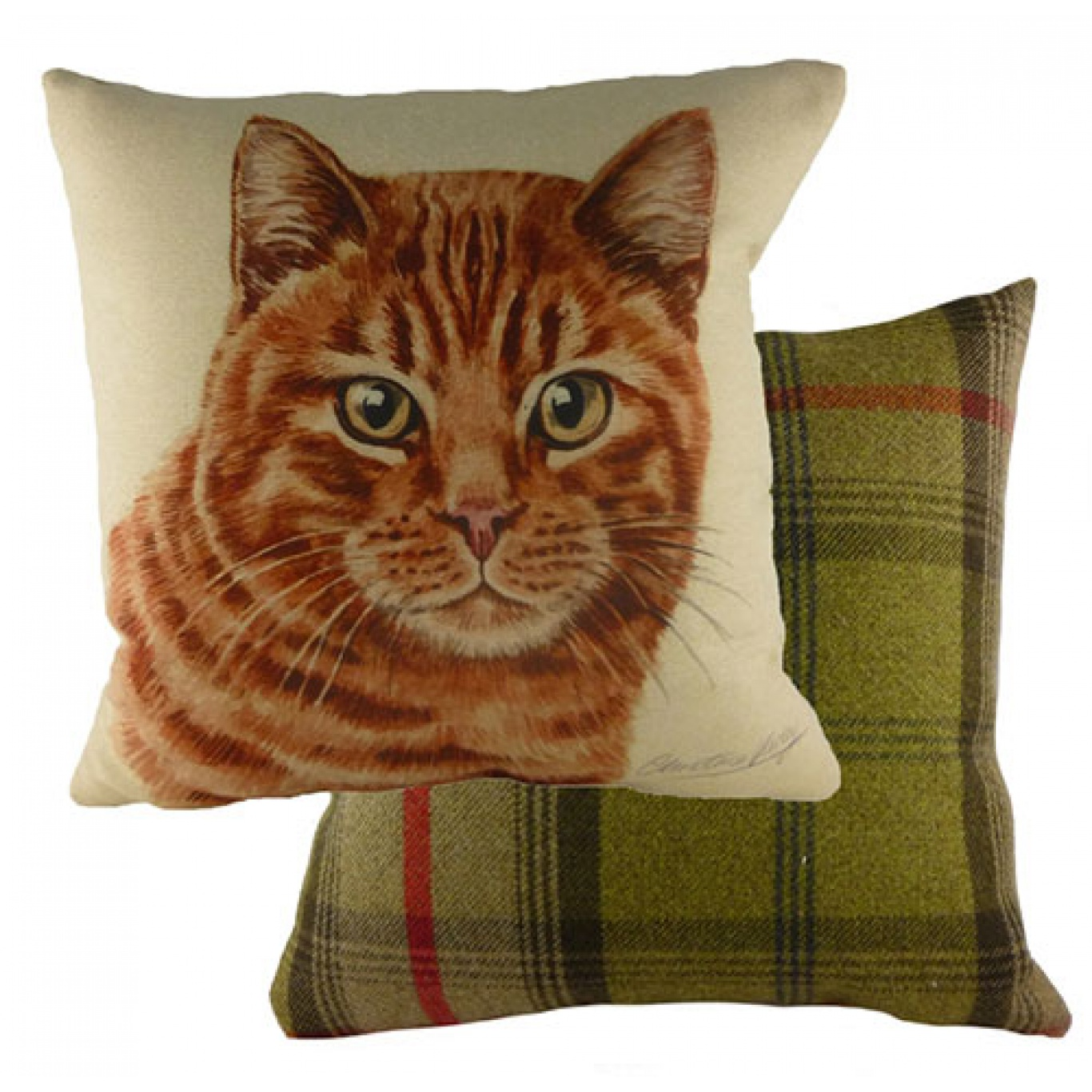 Image of Waggy Dogz Ginger Cat Cushion Cover